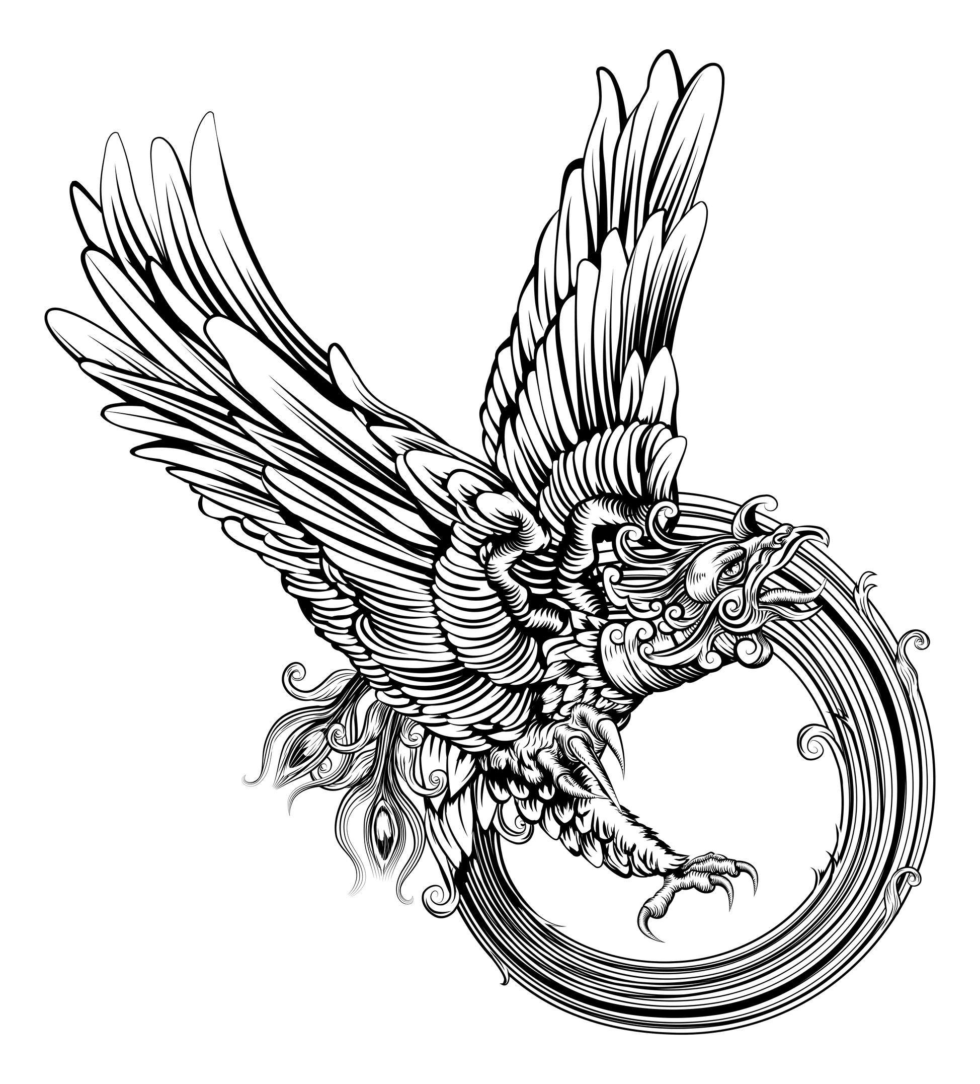 Dessin D Aigle Royal coloriage d'un aigle royal