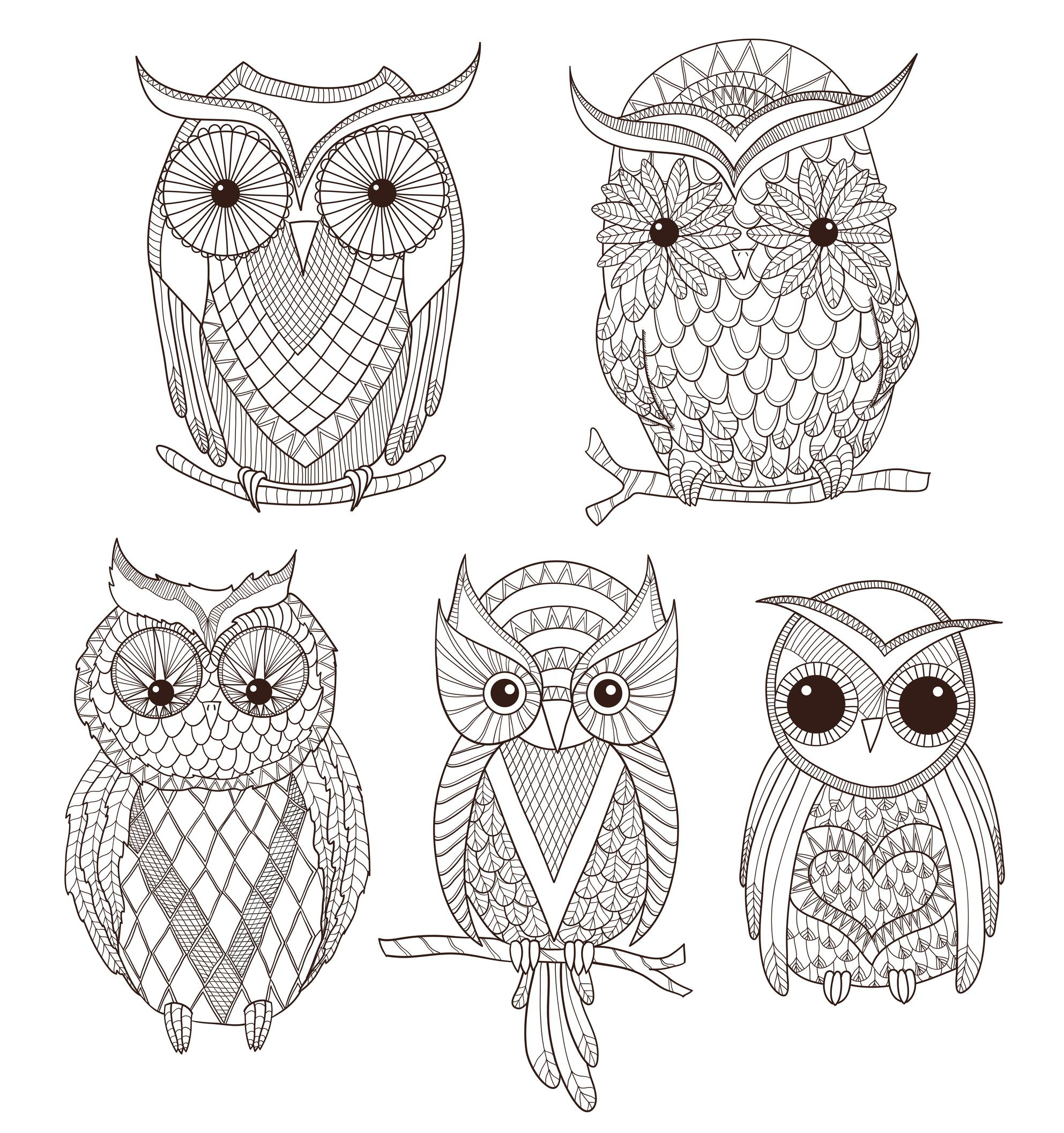 Coloriage Facile Hibou.Coloriage Adulte Hiboux