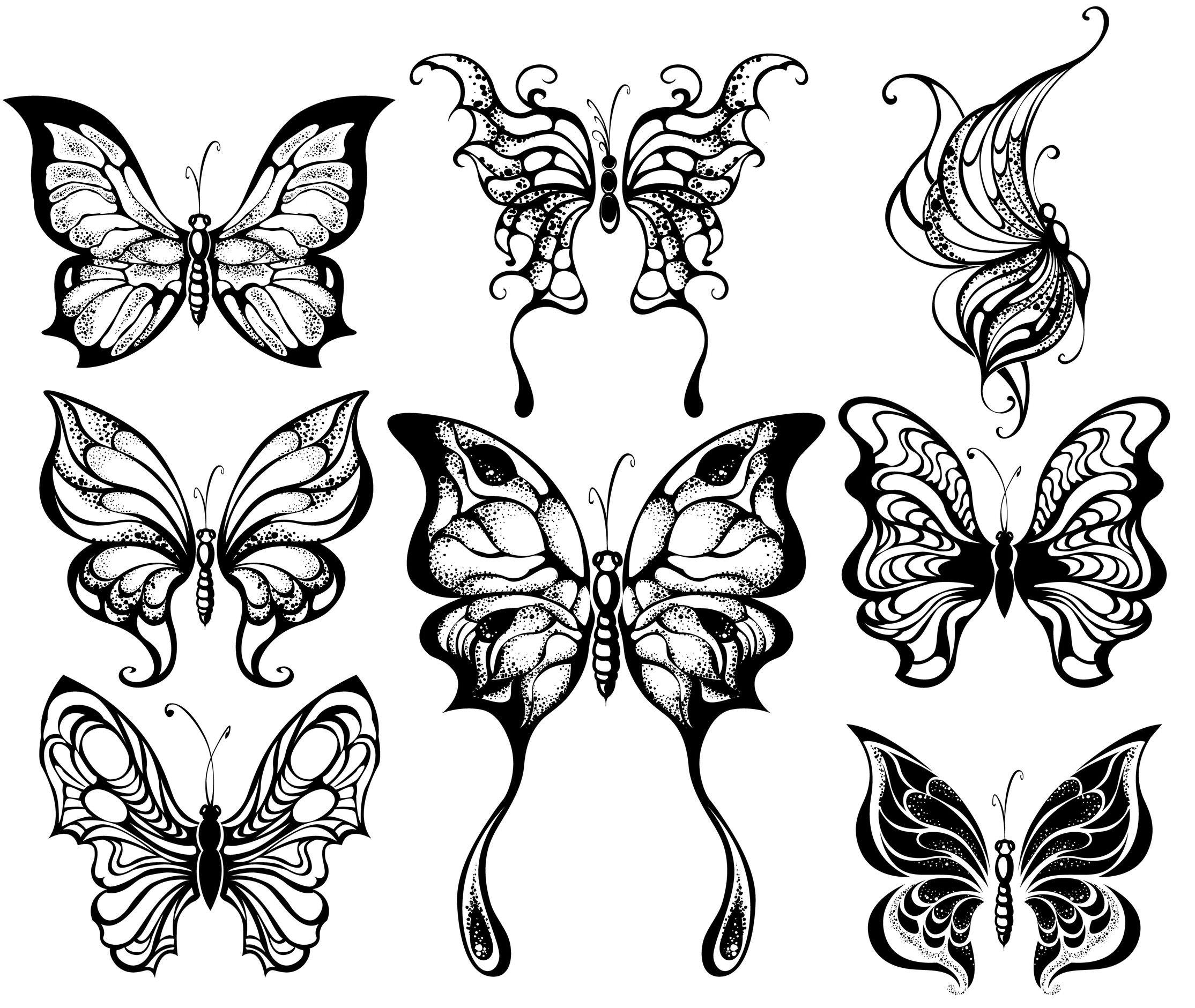 Coloriage papillons f eriques - Coloriage d un papillon ...
