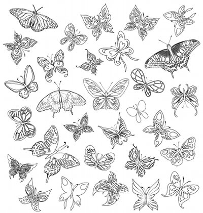 Coloriage adulte nature - Coloriage en ligne papillon ...